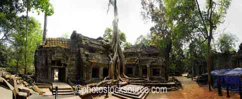 Photo of Temple Under Tree Roots